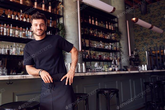 Porträt Von Zuversichtlich Männlichen Besitzer Von Restaurant Bar Lehnen Gegen Zähler