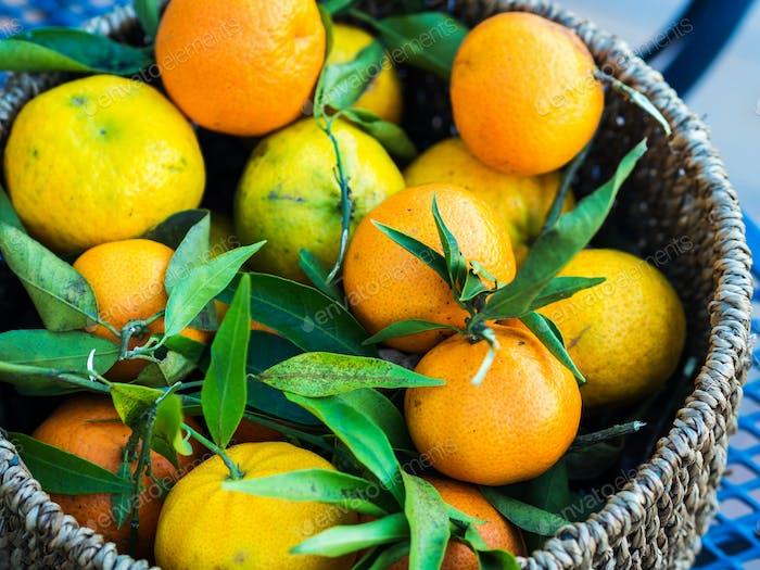 Italian fresh tangerines in a basket