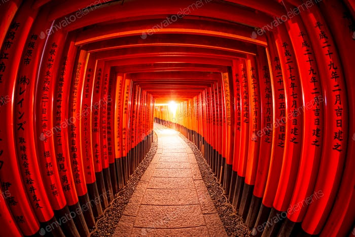 Torii gates, Fushimi Inari Shrine, Kyoto, Japan