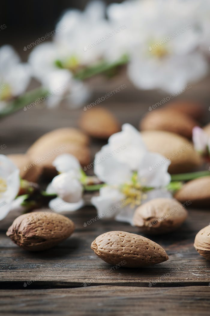 Fresh almond and flowers on the wooden table