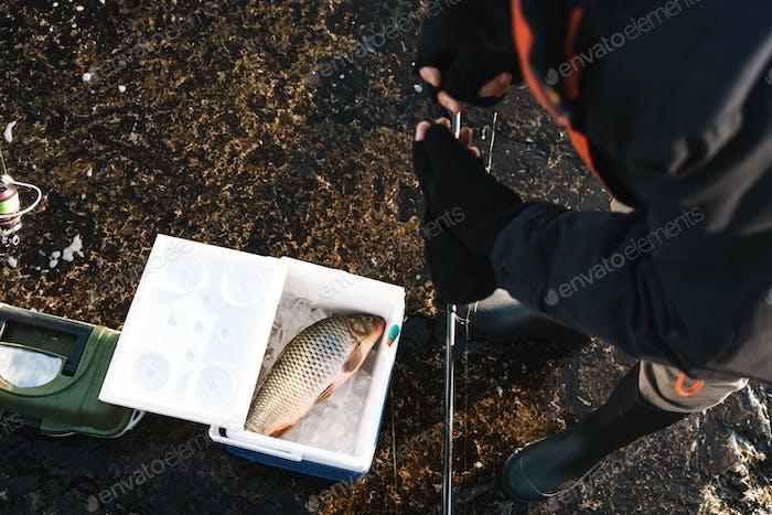 Nahaufnahme eines Fischers Putting gefangenen Fisch