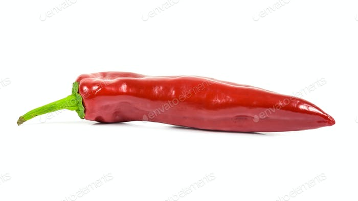 Red pepper on white background (3)