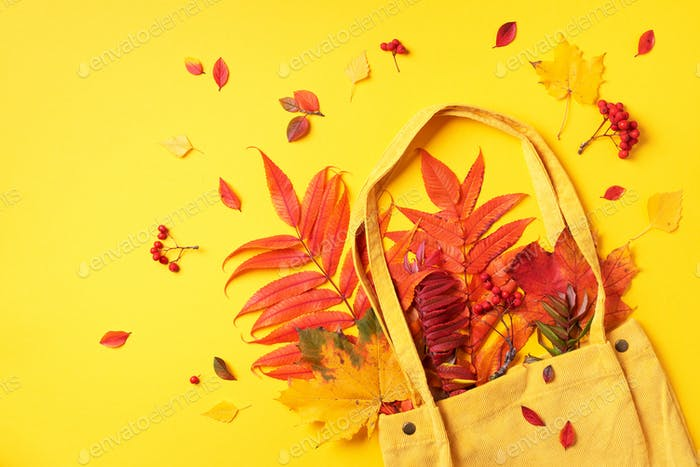 Autumn flat lay composition. Dry maple autumn leaves in yellow shopping bag on yellow background