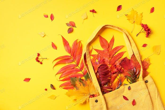Herbst flach legen Komposition. Trockene Ahornblätter im Herbst in gelber Einkaufstasche auf gelbem Hintergrund