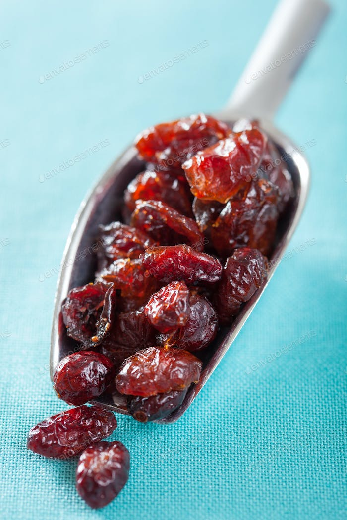 dried cranberries in a scoop