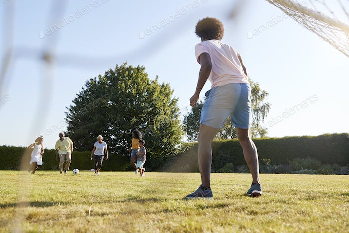 Dad defends goal in a multi generation family football game