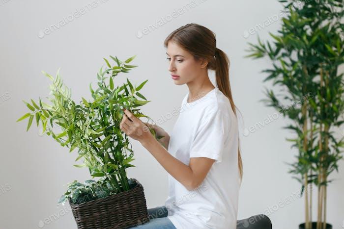 Frau zu Hause mit Blumen. Busch.