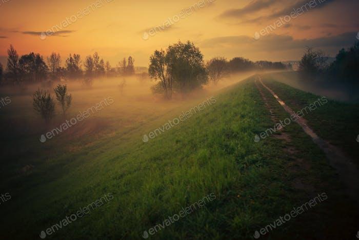 Foggy Floodbank Trail bei Sonnenuntergang