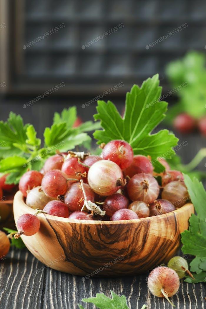 Sweet gooseberries summer harvest in bowl