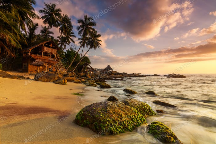 Sandy beach at dawn. Sri Lanka