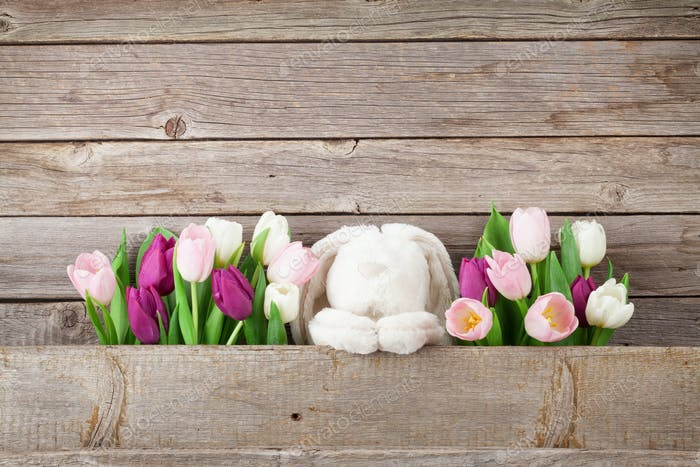Colorful tulips and rabbit. Easter card