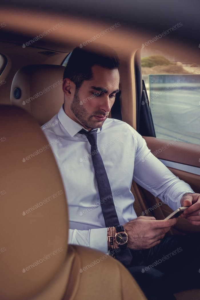 Businessman with laptop in the car.