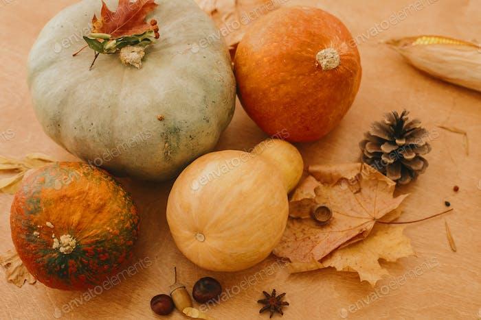 Happy Thanksgiving. Pumpkins, autumn leaves, acorns