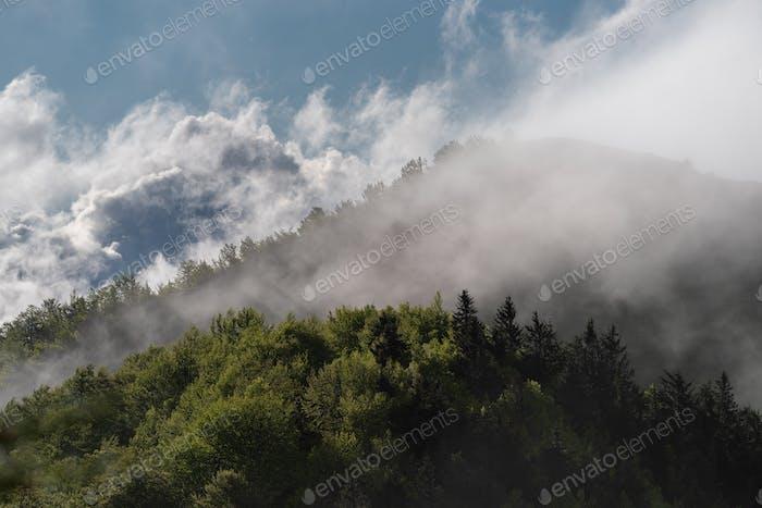 Nebel rollen über Hügel bei Sonnenaufgang