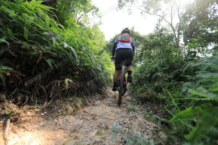 Cross country biking in summer rainforest