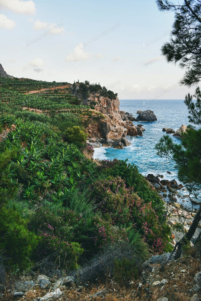 Mediterranean landscape with sea