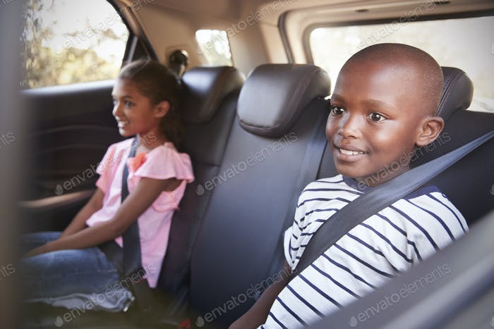 Smiling girl and boy in the back of car on family road trip