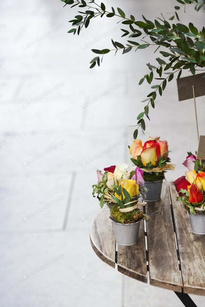 Rosen und grüne Blätter in Eimern auf einem Holztisch