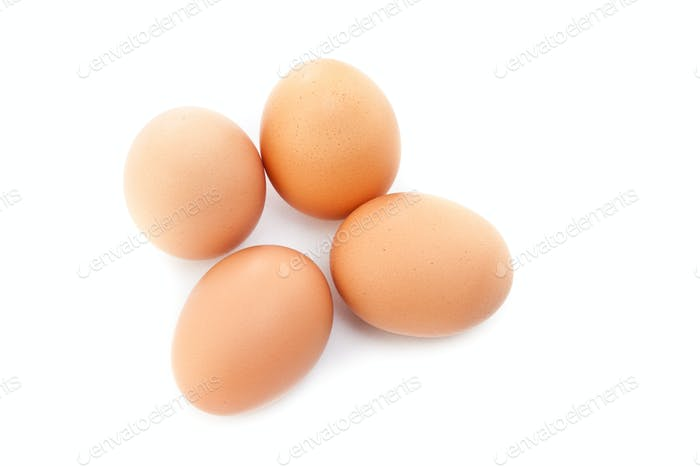 eggs isolated