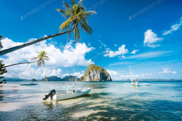 Exotic tropical seascape with palm tree, jetty pier, boats, blue sky and white clouds