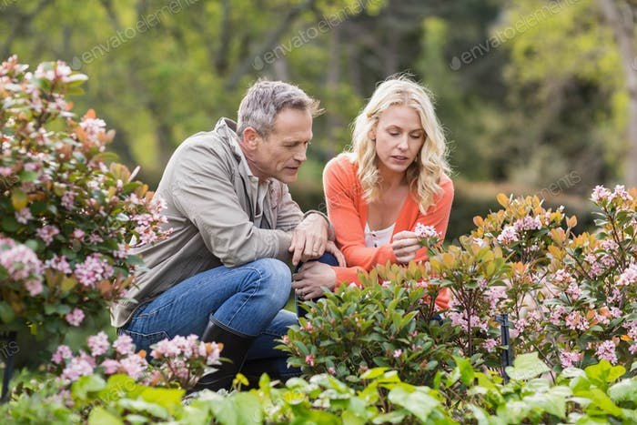 Cute couple looking at flowers in the garden