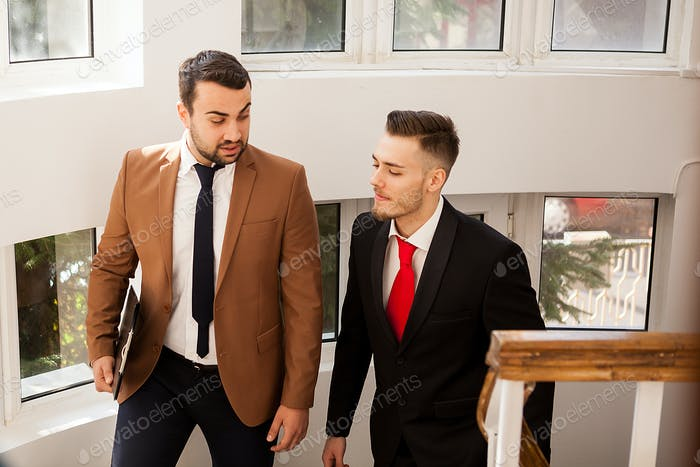 Business partners in formal suit walking and talking