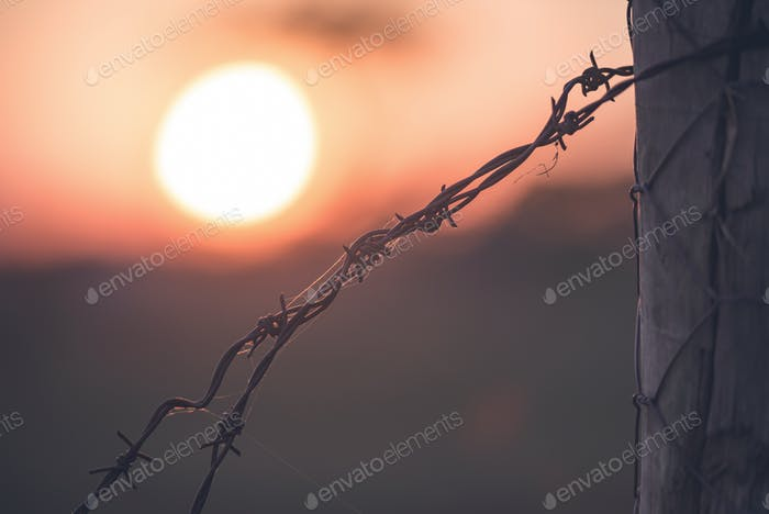 Sunset Behind The Fence