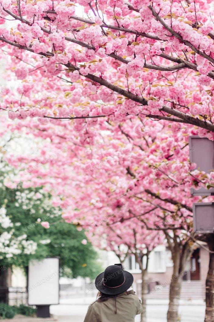 Hipster Mädchen im Hut fotografieren von schönen blühenden Sakura rosa Bäume