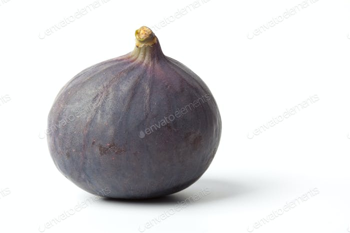 Whole single fresh fig