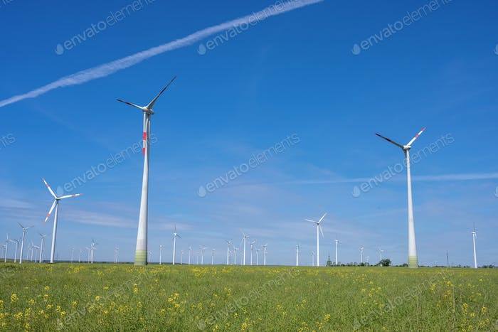 Modern wind wheels with a clear blue sky