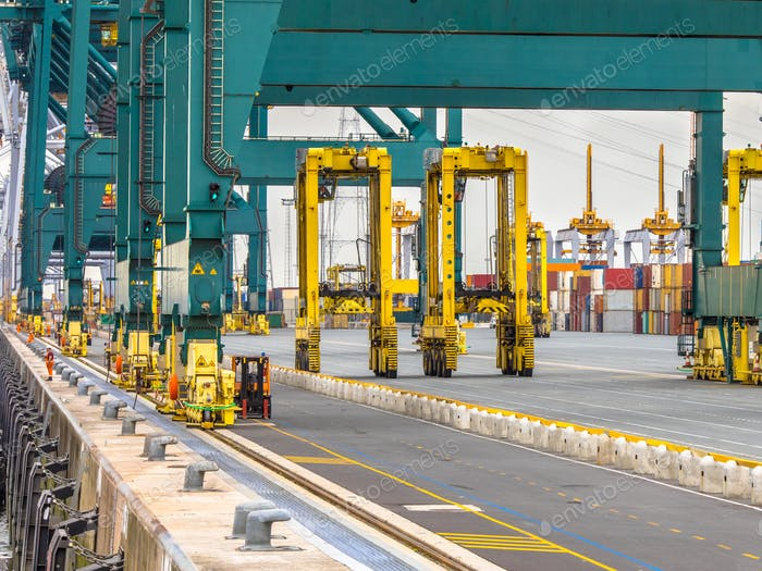 Giant wharf cranes in container terminal
