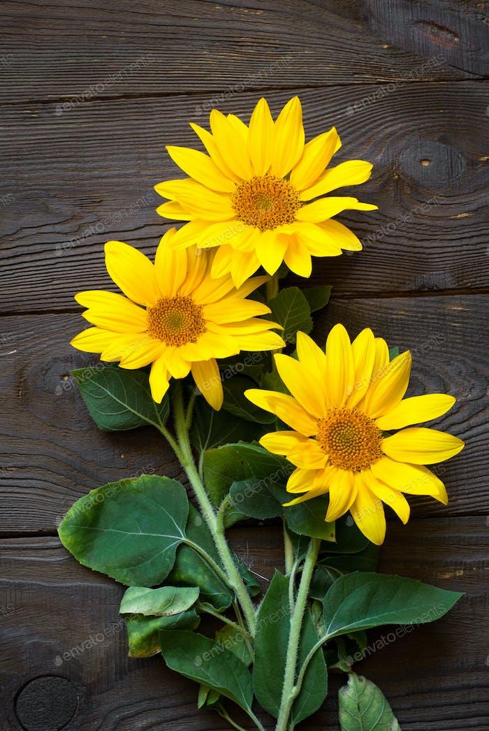 Sonnenblumen am Holztisch.