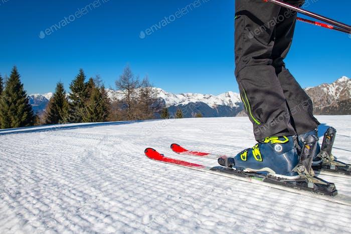 Ski Detail auf Ski