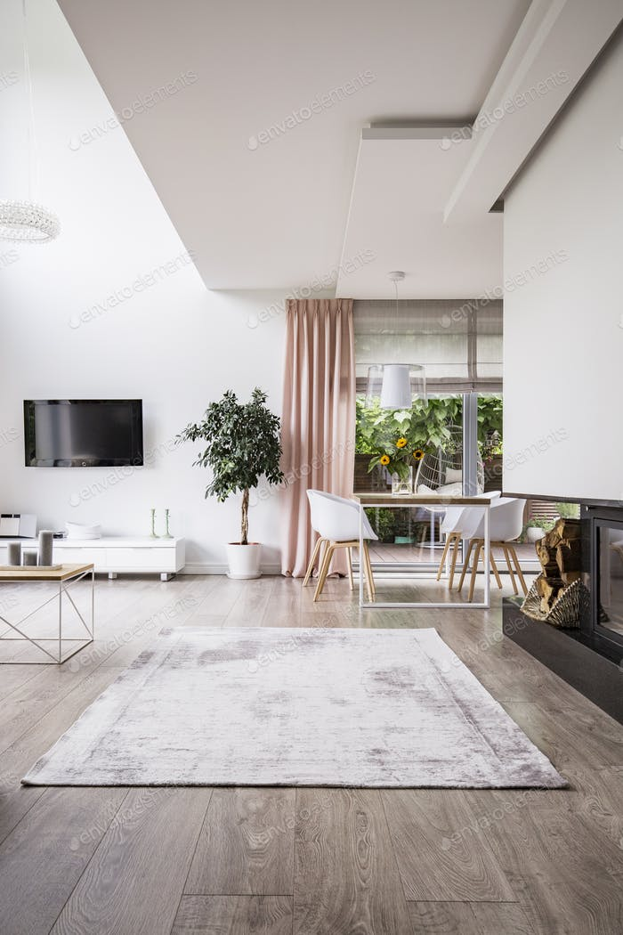 Rug on hardwood floor in a stylish, open space living room inter