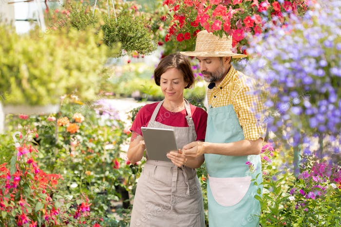 Young woman and her mature colleague in aprons looking at touchpad display
