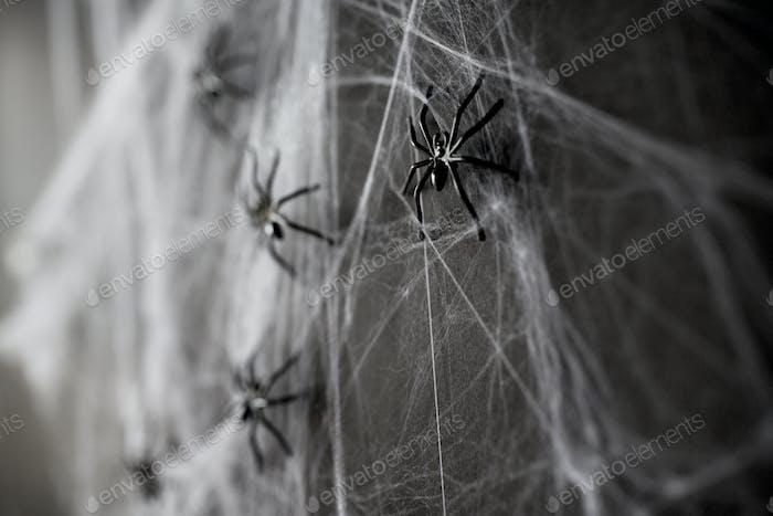 Halloween-Dekoration von schwarzen Spielzeugspinnen im Netz