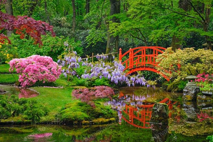 Japanischer Garten, Park Clingendael, Den Haag, Niederlande
