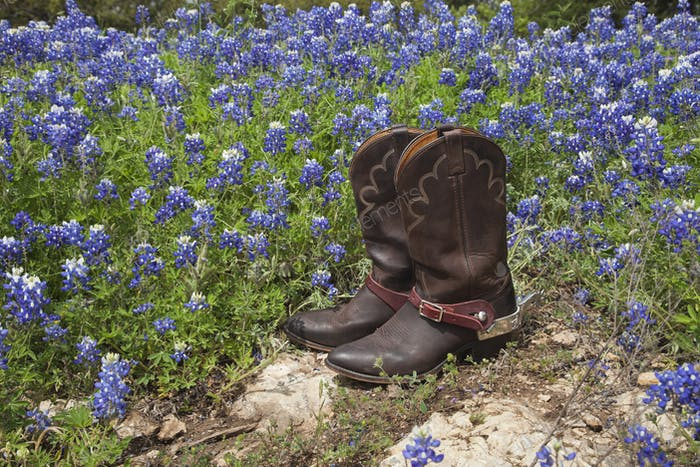 Cowboy Boots in a Field of Bluebonnets in Texas