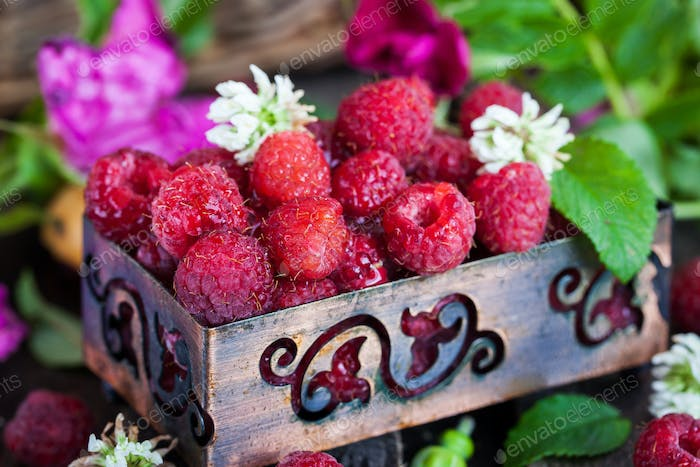 Fresh organic ripe raspberry in a box
