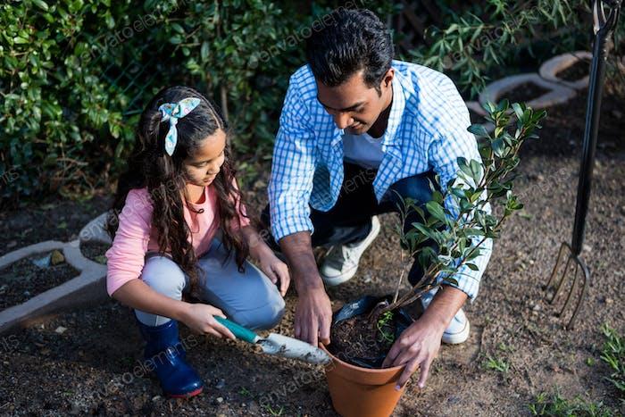 Vater und Tochter gießen eine Pflanze im Topf im Hinterhof