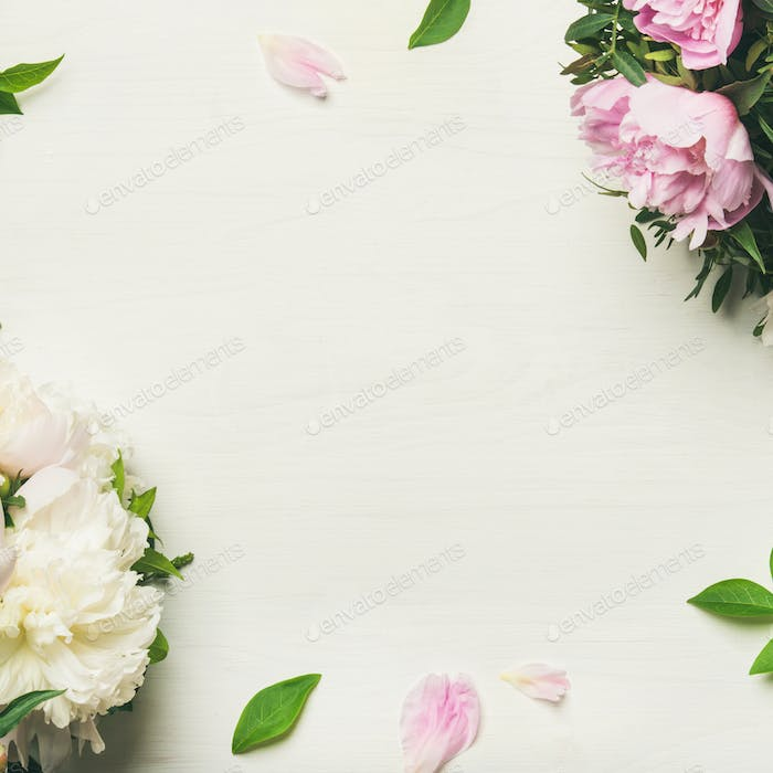 Flat-lay of peony flowers over white background, copy space
