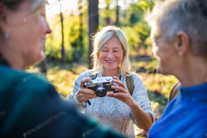Senior women friends walking outdoors in forest, taking photos with camera.