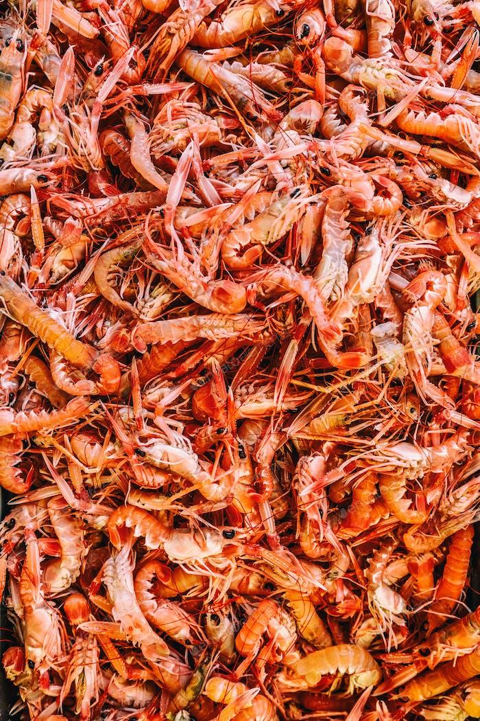 Fresh shrimp in market