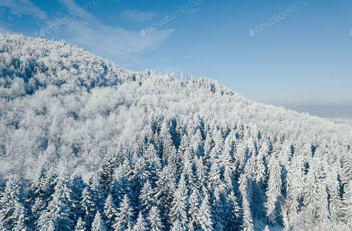 aerial view of the carpathian mountains in Ukraine during winter