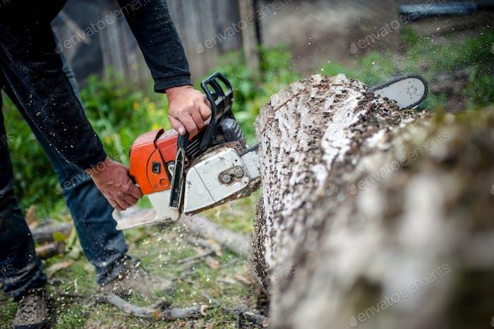 Mann mit benzinbetriebene Kettensäge Schneiden Feuer Holz von Bäumen