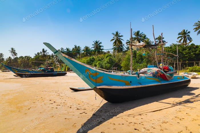 Traditional fishing boats on a sandy beach. Sri Lanka.