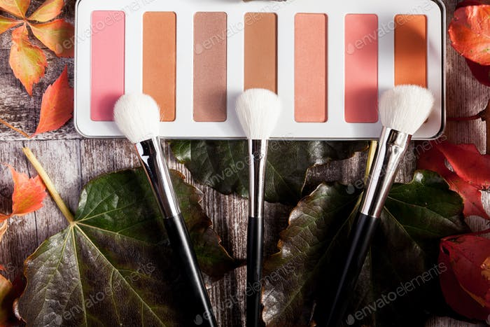 Professional cosmetics make up prducts in autumn concept on dark wooden background