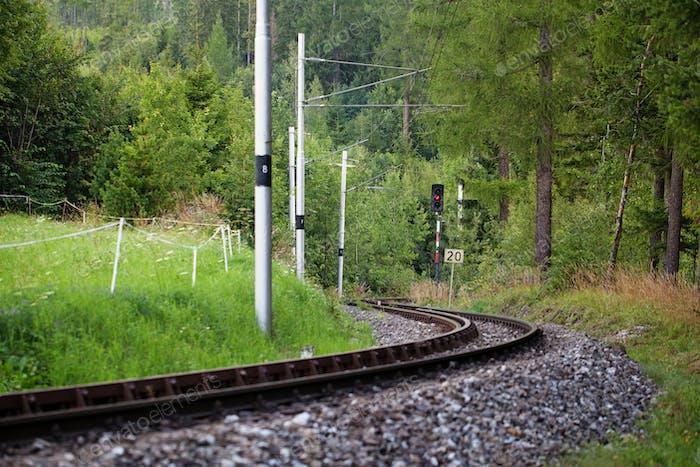 Scenic Eisenbahn zwischen den Bäumen
