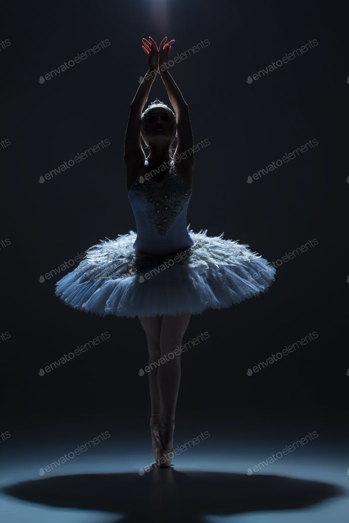Portrait of the ballerina in ballet tatu on dack background