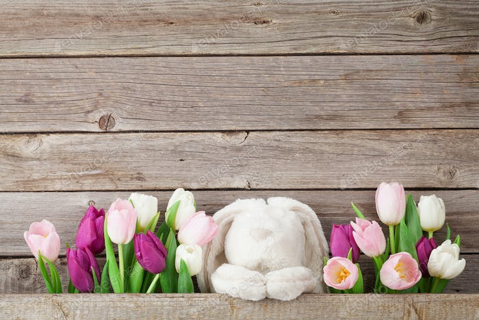 Colorful tulips and rabbit toy